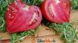 Pomidory bawole serca